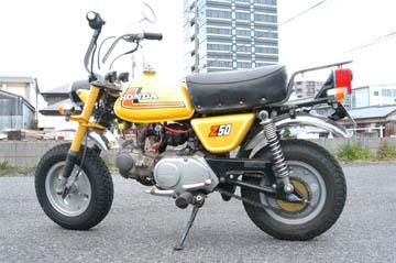 monkey13494.jpg